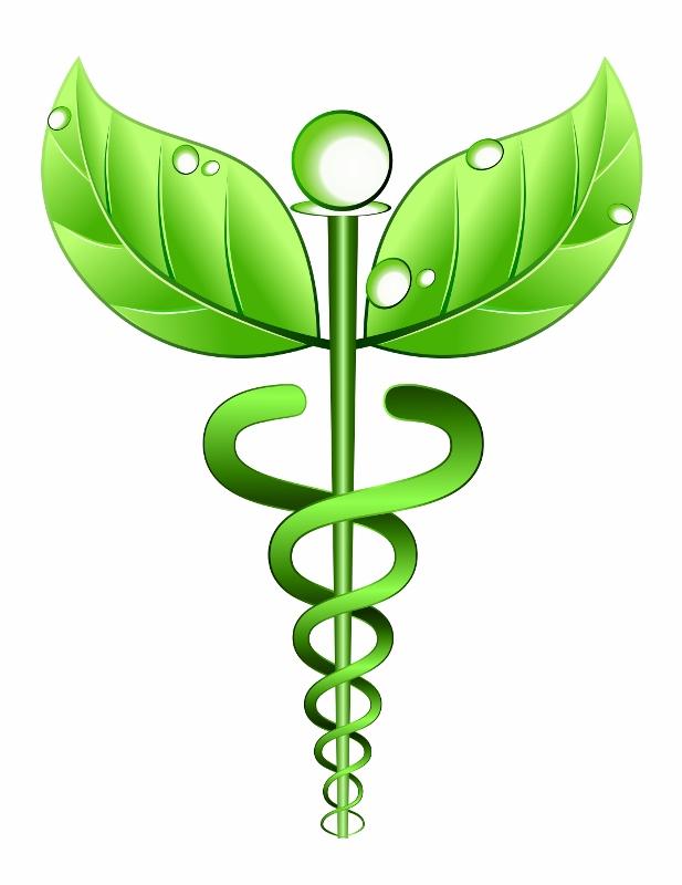 Herbal Medicine Staff (617x800)